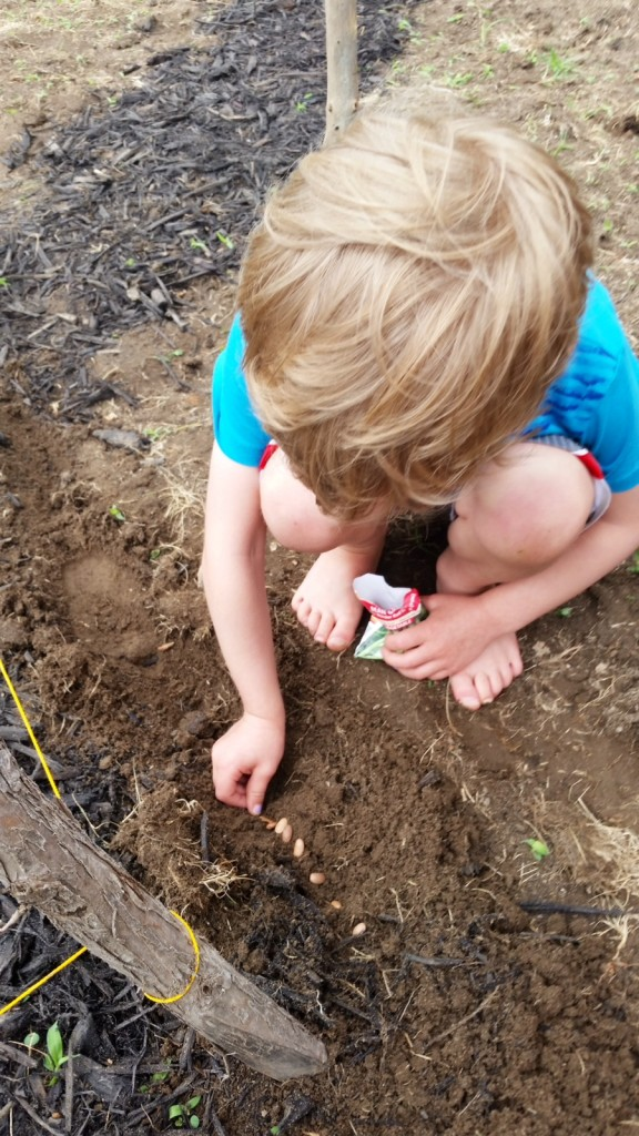 my son practices gardening