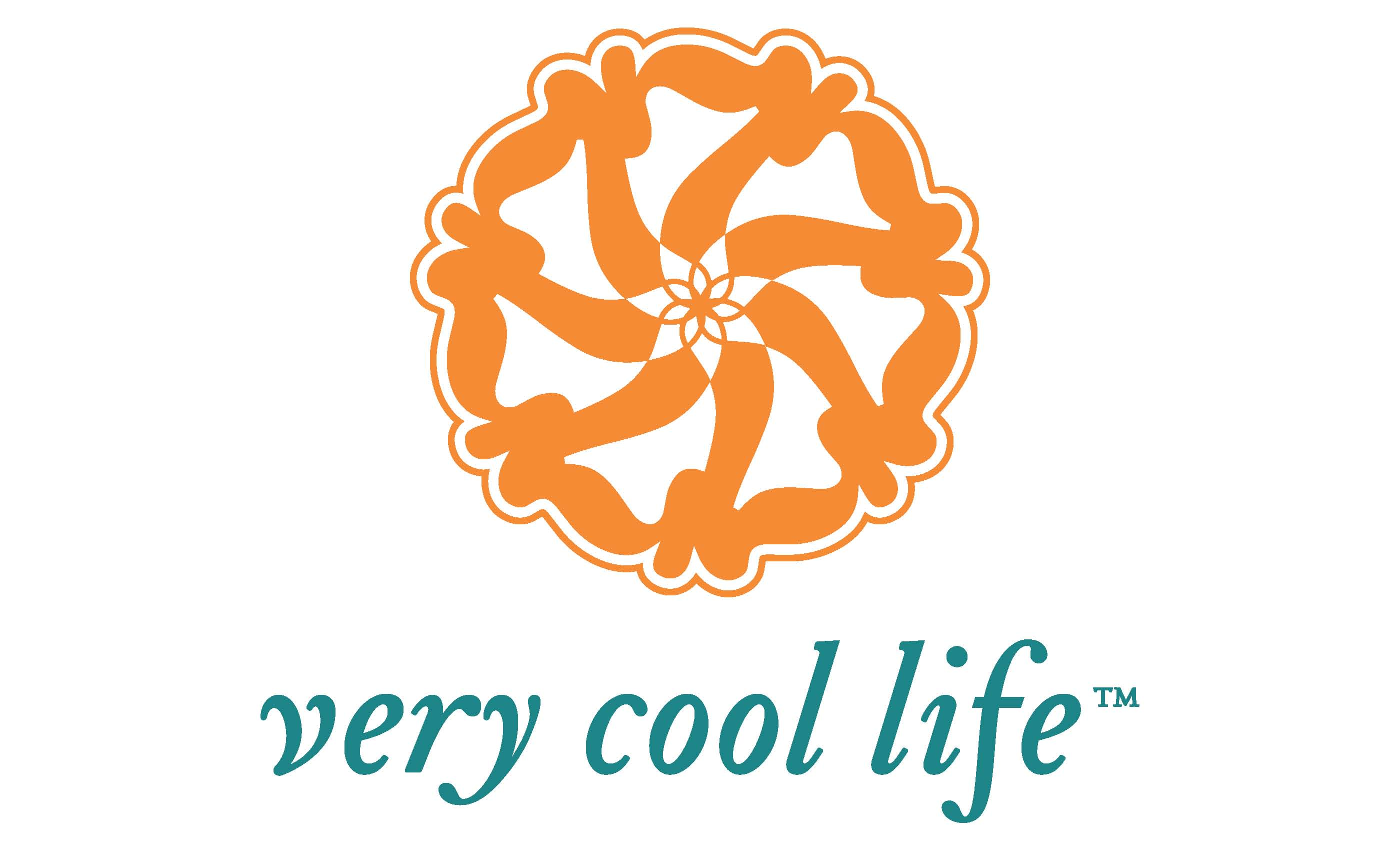 very cool life code mastery program